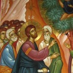 15th Sunday of Luke, Zacchaeus Sunday