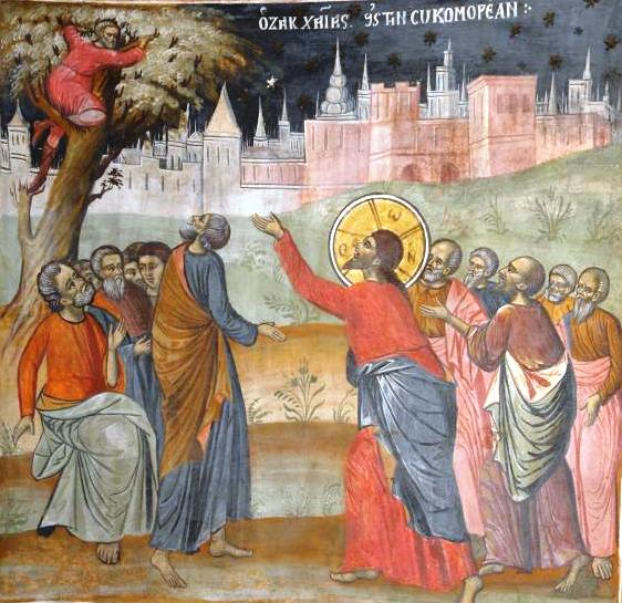 Sunday of Zacchaeus (Luke 19: 1-10)