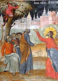 Sunday of Zacchaeus (Luke 19: 1-10)